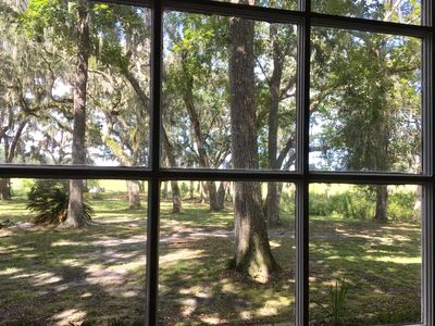Photo for Beautiful Marsh View from Coastal Cottage in Quiet Oak Canopy Setting
