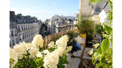 Nest on the roofs in the heart of Paris with terrace