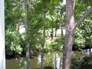 View of Lagoon from Screened Porch