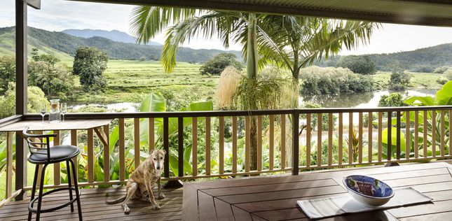 Upper Daintree House