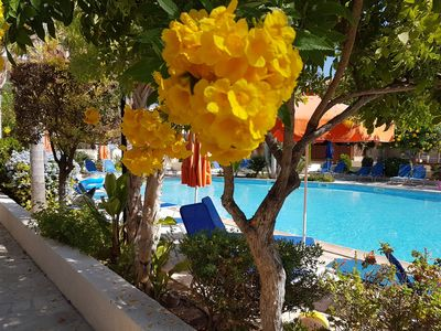 Photo for POOLSIDE VILLA **FREE WI-FI, WELCOME  PACK ,** LATE DEPARTURE BY ARRANGEMENT