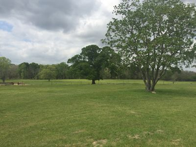 Just minutes from The Woodlands Texas this cozy reatreat is perfect for relaxing