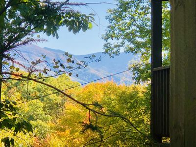 Photo for Romantic*Mountain view* cozy secluded hideaway* close to attractions*whimsical