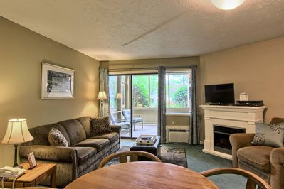 Spacious living room - This cozy living room includes a sleeper sofa, comfy chair, electric fireplace, TV with cable & DVD player.