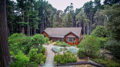 Whispering Ferns is nestled in a 5-acre redwood, cypress and oak forest.