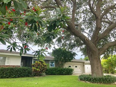 Photo for Immaculate Family-Friendly Oasis Just Minutes From Siesta Key And Lido Beaches!