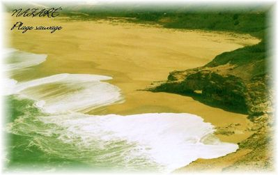 Photo for R / C apartment of a private property. Quiet area of Nazaré -Portugal.