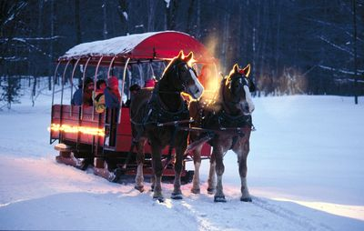 Horse Drawn Sleigh Rides in Winter and Summer