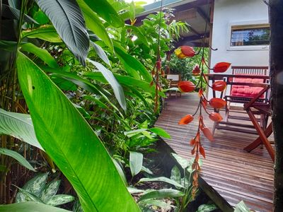Photo for Lover's nest in the heart of a rich tropical garden