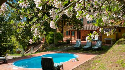 Photo for Villa La Pieve with pool