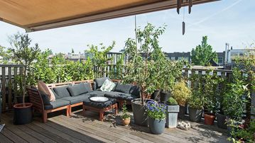 Family House With Sunny Roof Terrace