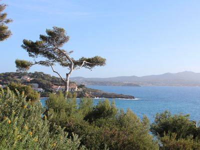 Photo for Our selection! Portissol district, the most popular of Sanary on Wed