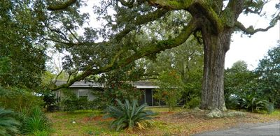 Photo for Private Cottage, Historic Ocean Springs, Intown Location