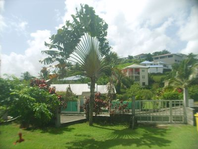 Photo for the tree of the traveler vacation rental
