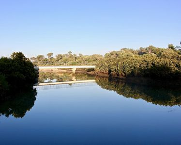 Photo for Inlet Waters Escape - Hakea King Suite. Stroll the inlet & nature boardwalk