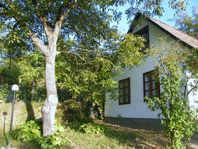 Photo for Comfortable holiday home in the vineyards, in a quiet location