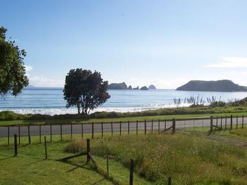 Otama Beach, Waikato, North Island, New Zealand