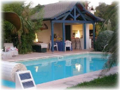 Private heated swimming pool - exotic garden