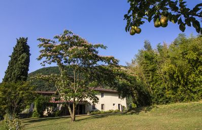 Photo for Classic Tuscan Farmhouse with large pool in the hills near Lucca, sleeps 14