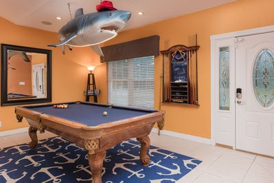 The pool shark is waiting for you!