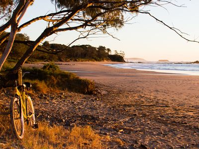 Photo for Saligna by The  Sea at Sandy Beach  -Coffs Harbour