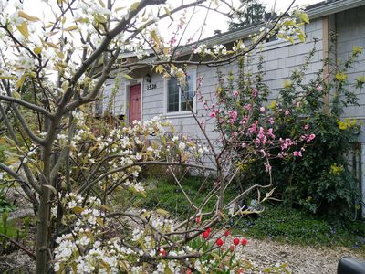 Photo for Cute & Affordable Lakeside Cottage within walking distance of Snohomish