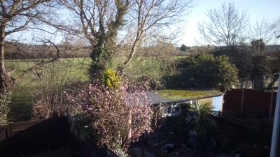 view from back of house with direct access from garden