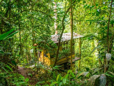 Photo for Remote Two-level Treehouse in Private Rainforest Reserve
