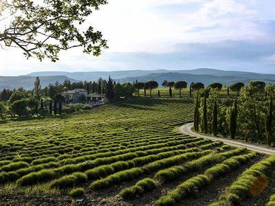 Photo for LUBERON - DOMAINE GUEYDAN - Mas 18th and his sheepfold