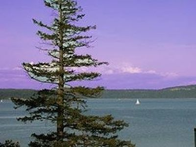 Photo for Waterfront Condo Located Among Towering Fir Trees with Eagles Flying Above