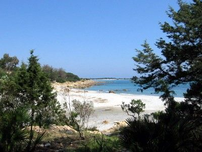 Photo for Beach house in the woods with direct access to the beach in Sardinia