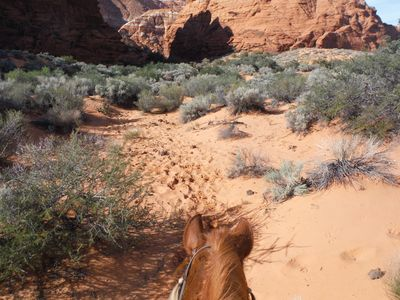 Snow Canyon, entrance about a mile to home.