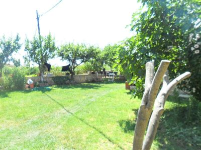 Photo for Holiday apartment Privlaka for 3 persons with 1 bedroom - Holiday apartment