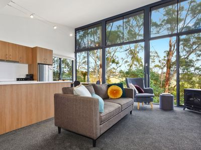 """""""The Ridge' - lounge and kitchen with views across the vineyard and Tamar Valley"""