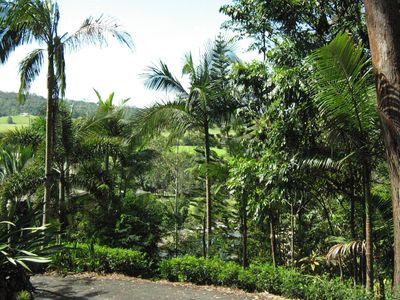 Tropical gardens surround parking space