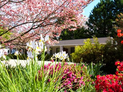 Looking through our beautiful Spring Garden