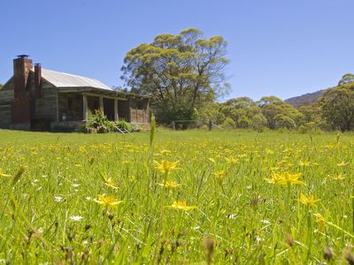 Summer at Moonbah River Hut