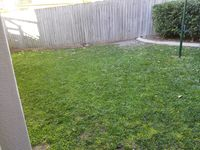 Private fully fenced garden with plenty of room to play