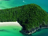 And of course check out Cape Tribulation, our World Heritage Rain Forest