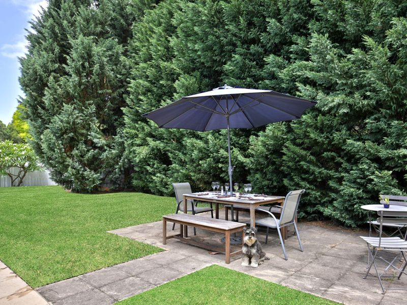 Image result for homes with big conifers