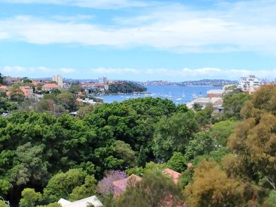 Stunning views of the park and Neutral Bay and the harbour
