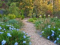 Explore the gardens along flower lined paths