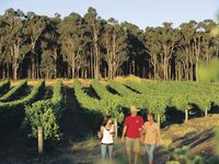 close to the best wineries in Margaret River