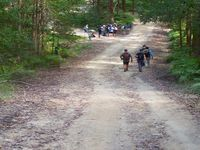 BUSH WALKING and BIRD WATCHING in the nearby forests