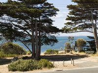 Walk across road and follow path along waters edge into San Remo