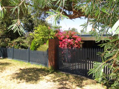 Private family & pet friendly holiday house 10 min walk to Blairgowrie bay beach