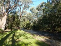 On the banks of the Ovens river