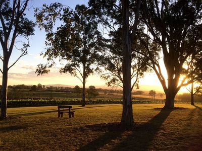 Sit and relax overlooking our vineyard and watch the sunset