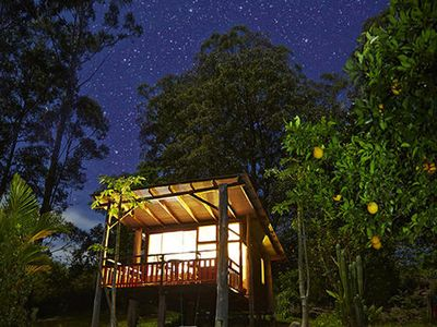 The eco-chalet in the rainforest