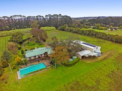 Hanns Creek Estate Vineyard and Accommodation in prestigious Merricks North